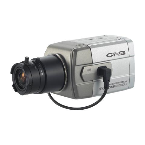 DM100 Dummy Cameras