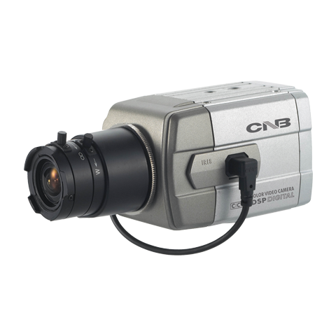 Dummy Cameras DM100